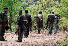 Force kills prize naxalite Zarina